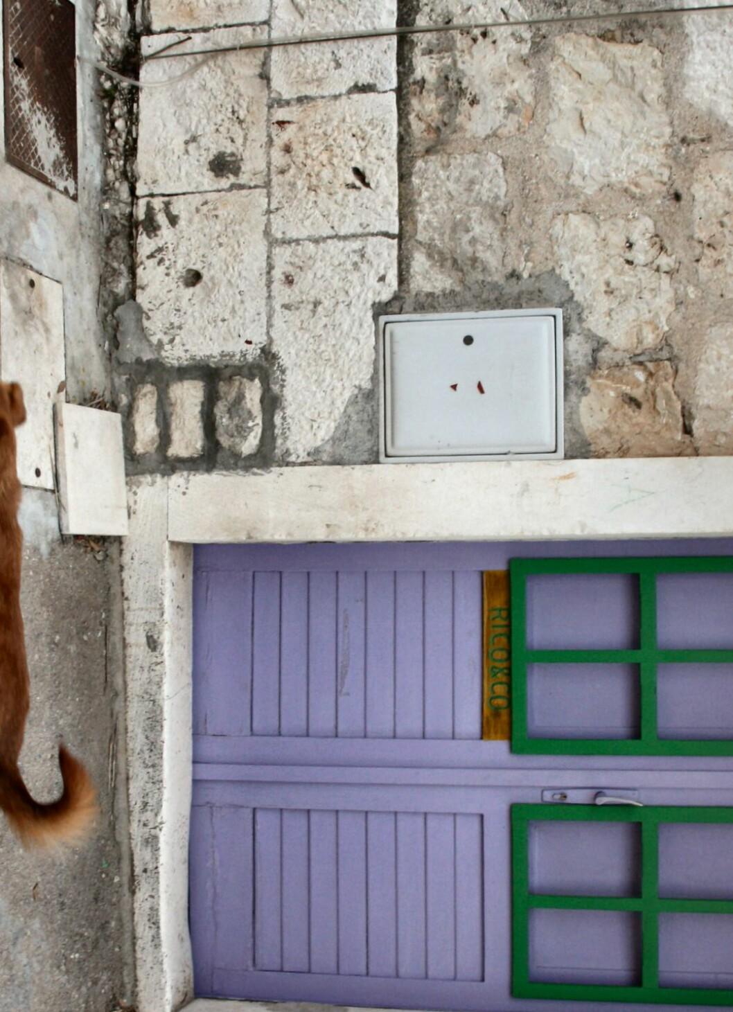 Koselige hus med fargerike dører preger Hvar by. Det er lett å drømme at man eier en liten leilighet her, og kan bo her hele sommeren. Foto: Stine Okkelmo