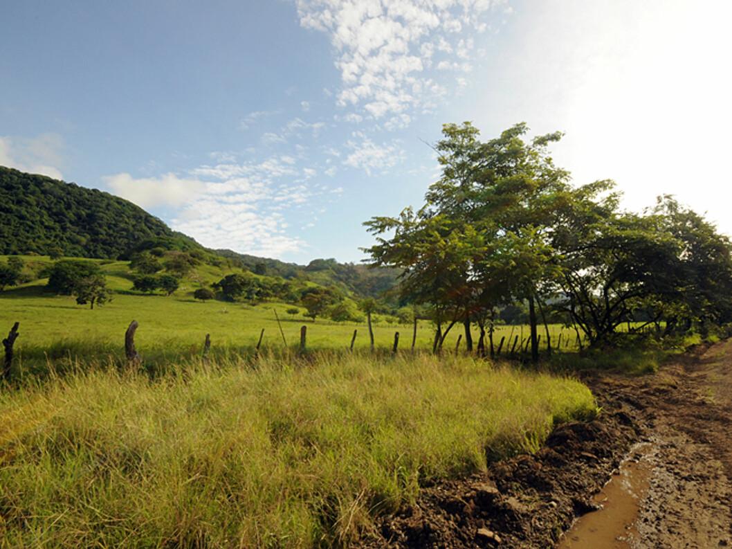 Utrolig vakkert landskap preger mye av veiene i Costa Rica. her fra Nicoya-halvøyen.