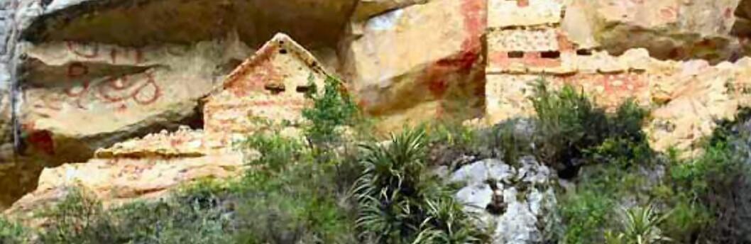 Chachapoyasfolkets tapte by er funnet. Fra før av har arkeologer funnet Kuelap, en annen av skyfolkets byer. Foto: InkaNatura Travel