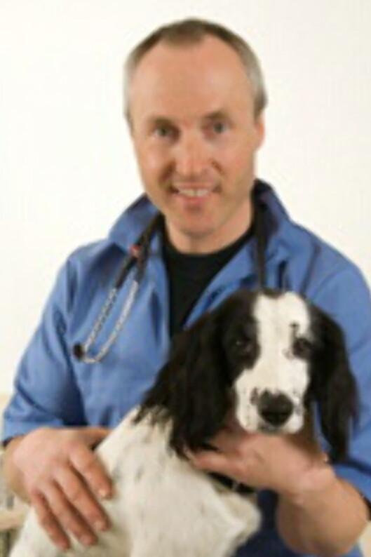 Sigbjørn Hesthammer Storli, leder i Smådyrpraktiserende veterinærers forening, sier det er mye å ta hensyn til før man får seg et kjæledyr. Foto: Dyreklinikken Lørenskog