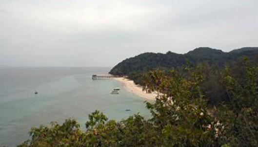 Hvite palmestrender, korallrev og yrende fiskeliv, og regnskog full av dyr og fugler du aldri har sett før. Det er det som venter deg på Malaysias østkyst. Foto: Stine Okkelmo