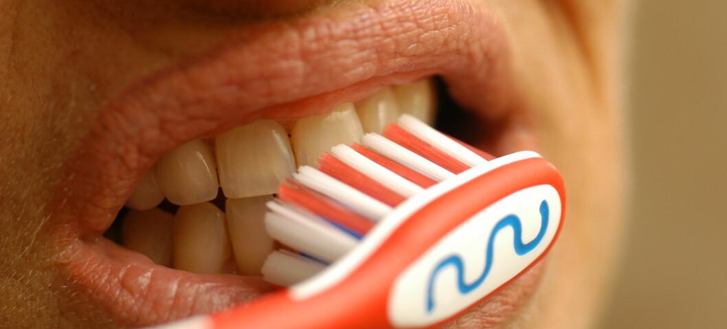 God tannhygiene er viktig for mer enn å unngå hull. Illustrasjonsfoto: colourbox.com