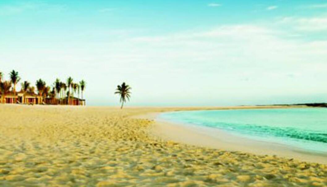 Liker du bedre å bade i sjøen, kan du bade fra de kunstige strendene som finnes på begge sider av hotellet. Foto: Atlantis The Palm