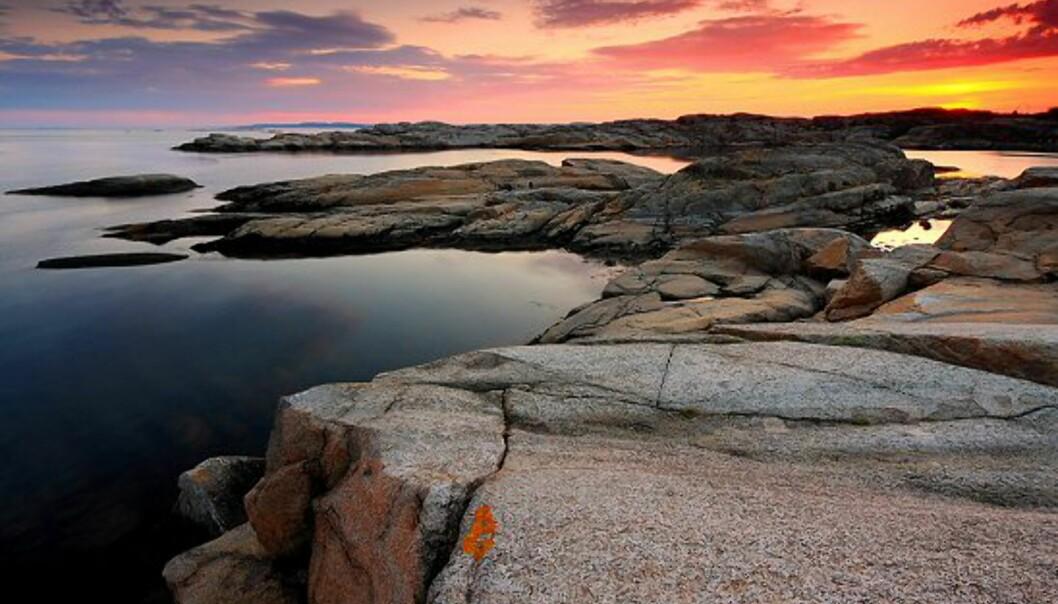 Foto: Karl-Johan Vasstrand