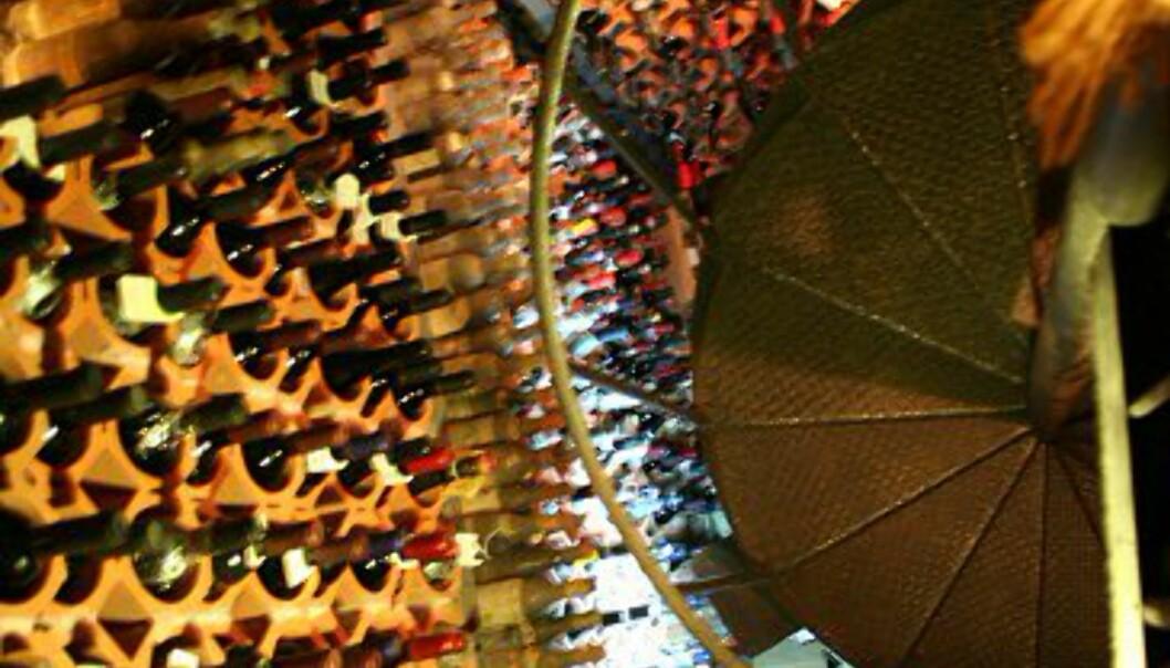 St. Patrick kan by på mer enn 400 ulike sorter vin, og den dyreste koster hele 6.000 Euro (ca. 48.000 kr). Vinkjelleren er opprinnelig en gammel romersk sisterne fra 300 år f. Kr som ble oppdaget under en restaurering for noen år tilbake. Foto: Elin Fugelsnes