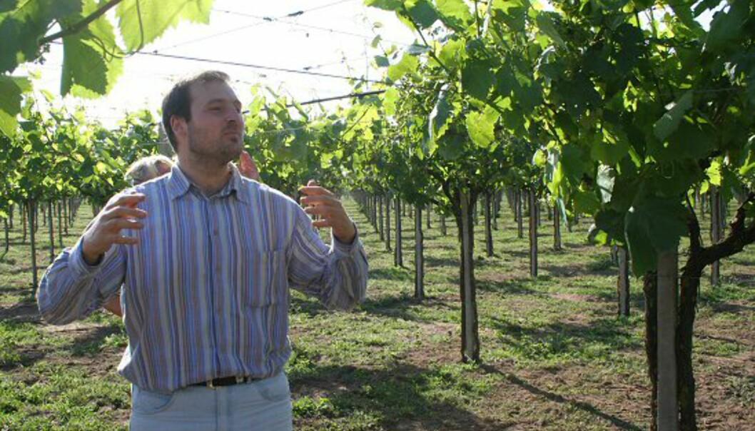 Den prisbelønte vingården Sant Andrea ligger en kort kjøretur fra Terracina sentrum. Her har det blitt produsert vin siden 1964 og sønnen på gården, Andrea, tar imot turister med stor entusiasme. Foto: Elin Fugelsnes
