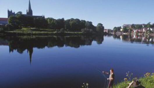 En spasertur langs Nidelva er også gratis. Foto: Trondheim Kommune