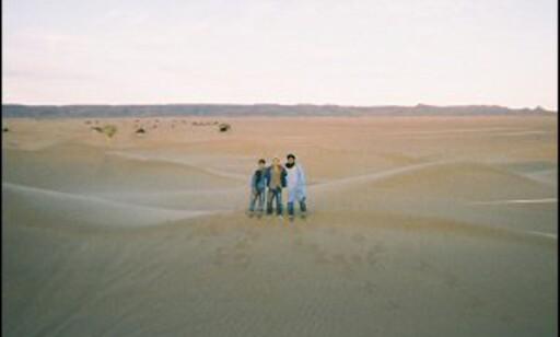 Du føler deg ganske liten mellom de endeløse sanddynene. Foto: Håkon Jarle