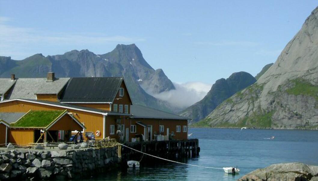 Fra Reine i Lofoten. Foto: Pål Amundsen