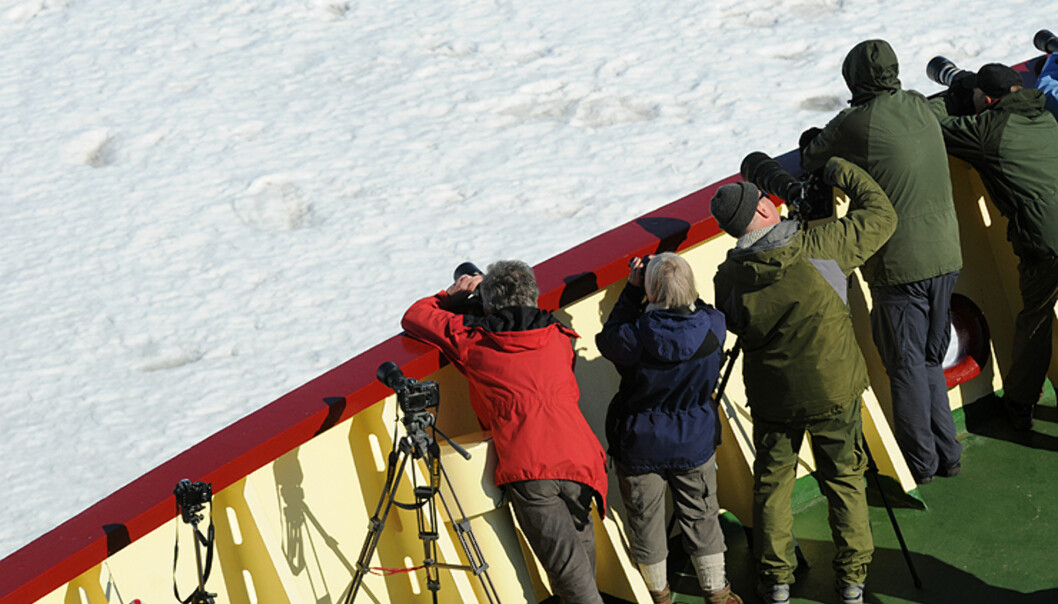 Mye av tiden på det ukelange cruiset gikk med på observasjon fra dekk. Vi hadde i gjennomsnitt to turer i gummibåtene hver dag. Man skulle aldri tro tiden kunne gå så fort i isødet.