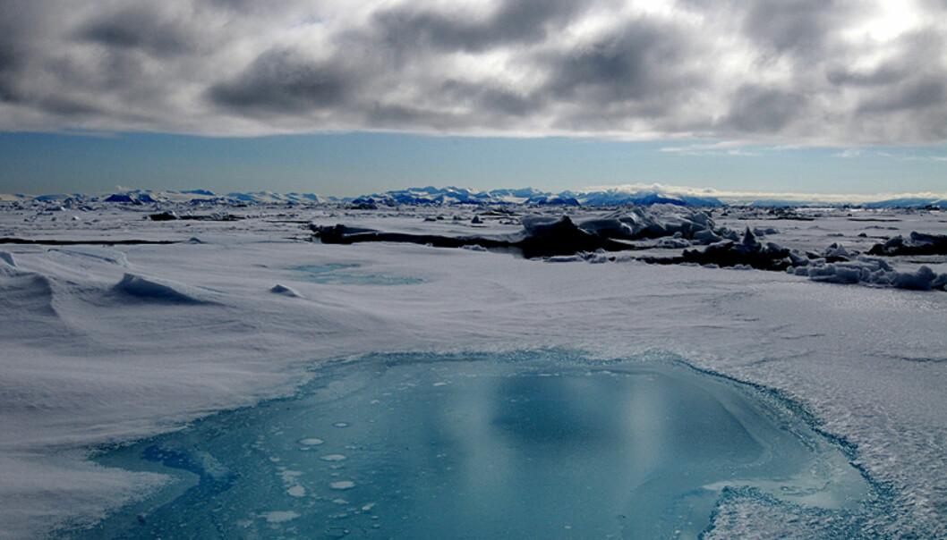 Kontraster ved 81 grader nord - så langt det går ann å komme med vanlige skip i verden. Herfra er det bare rundt 100 mil til Nordpolen.   Foto: Hans Kristian Krogh-Hanssen