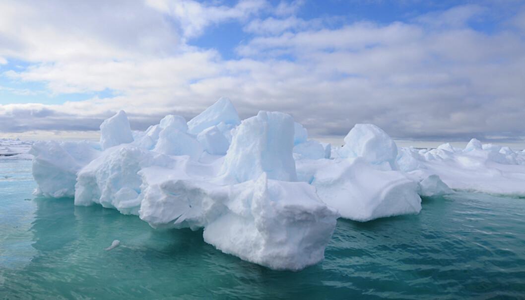 Ved 80 grader nord.  Foto: Hans Kristian Krogh-Hanssen