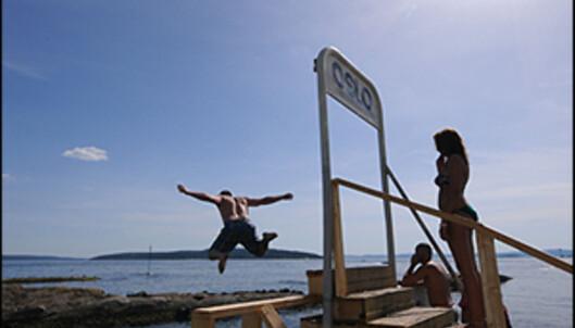 Nå kommer sommeren... Foto: Hans Kristian Krogh-Hanssen