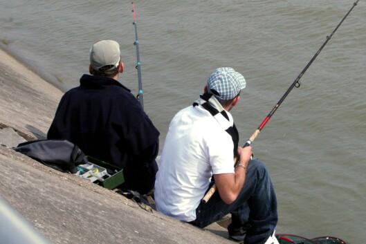 Slapp av på brygga med gode kompiser og en fiskestang. <i>Illustrasjon: colourbox.com</i> Foto: colourbox.com