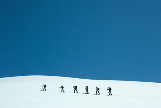 Samhold på ski. <i>Illustrasjon: colourbox.com</i> Foto: colourbox.com