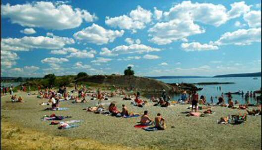 Strandliv på Huk i Oslo. Foto: Nancy Bundt/Innovasjon Norge