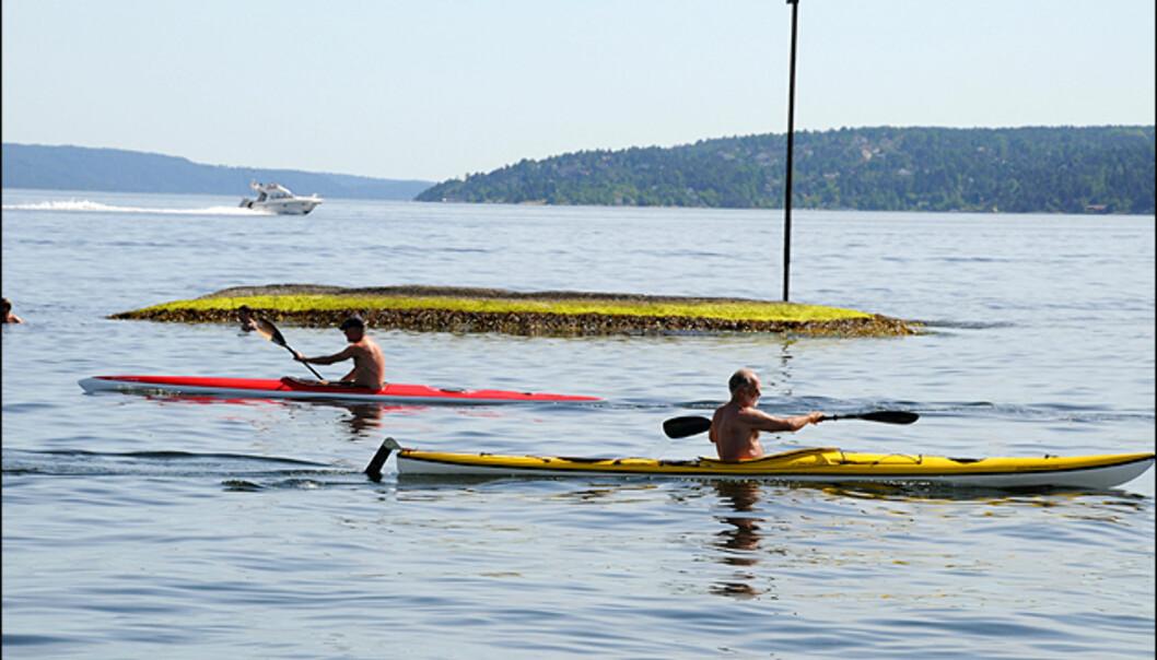Båtlivet er i full gang på Oslofjorden.