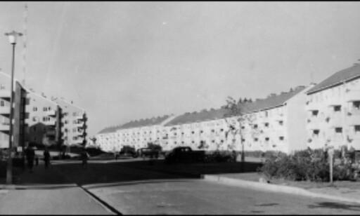 Obos-blokkene på Bergkrystallen fra 50-tallet. Foto: Obos