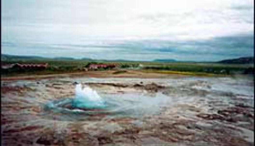 Island byr på unike naturopplevelser. Her Geysiren Strokkur. Foto: Olaf Tjore