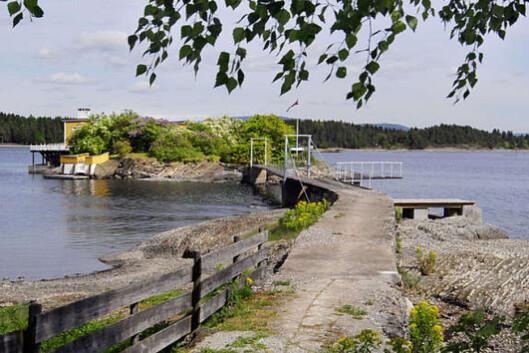 Denne gangveien er forbindelsen mellom Kreyerskjær og Nesøya. Foto: Advokatene Sem og Johnsen Eiendomsmegling.