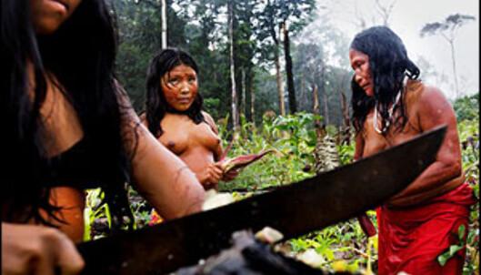 Indianerne er bekymret over tyvhogst og inntrengere. Foto: Bo Mathisen