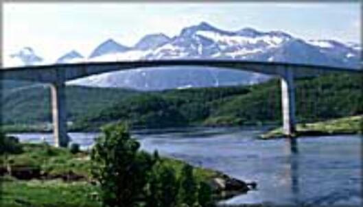 Saltstraumen er verdens sterkeste tidevannsstrøm som går mellom Knaplundøya og Straumøya i utenfor Bodø. Saltstraumen er en av Norges største turistattraksjoner, og svært attraktiv for fiskere, dykkere og friluftselskere.<br />  Foto: Espen Mortensen