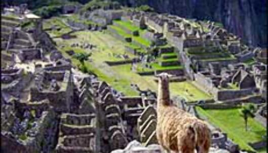 Etter at Machu Picchu kom på listen over de syv nye underverker, har turiststrømmen økt kraftig. Foto: Paul Jacob Hansen