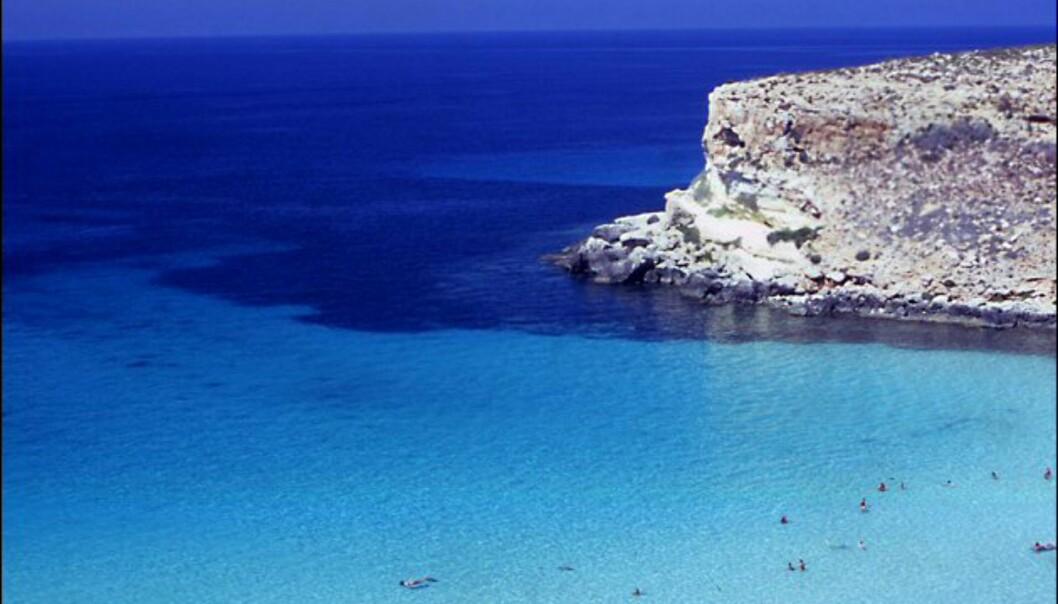 Sicilias Spiaggia dei Conigli trenger neppe ytterligere markedsføring. Foto: www.photolito.com