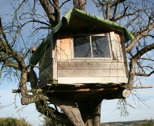 Med en trehytte på tomten vil nok boligen din være ekstra attraktiv for småbarnsfamilier. <i>Foto: Colourbox.com</i> Foto: Foto: Colourbox.com