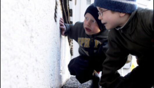 Aktiviser familien, og la gjerne de minste få oppgaven med å sjekke husets grunnmur. <i>Illustrasjonsfoto: Jan Lillehamre/Ifi.no</i>