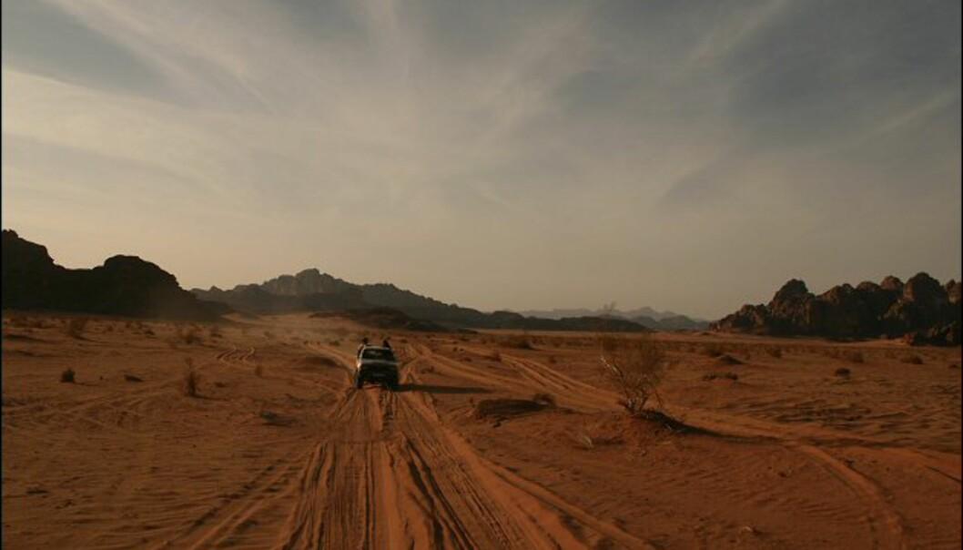 Full fart over sanddynene.