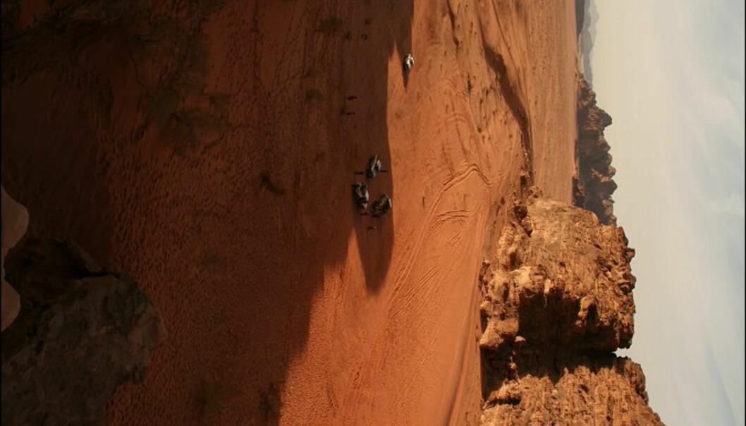 Etter en heseblesende løpetur opp sandskråningen, blir vi belønnet med flott utsikt over Wadi Rum.