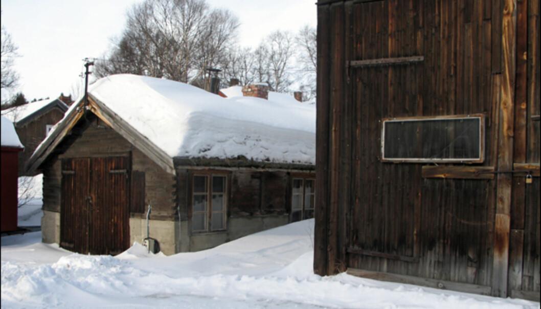 De gamle trehusene i Røros har opplevd en og annen vinternatt før.