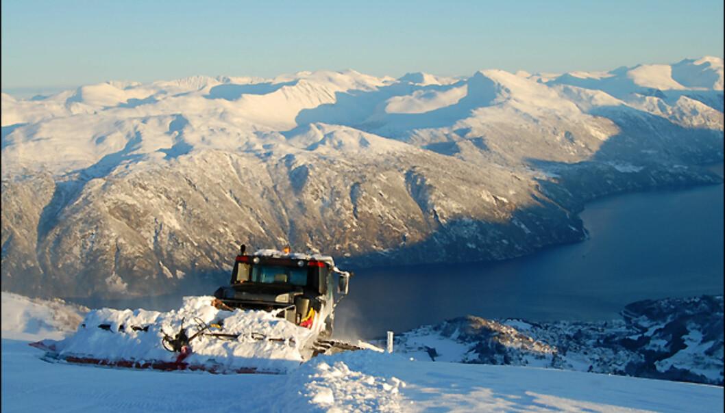 Utsikten fra Roaldshorn. <i>Foto: Egil Holshagen</i>