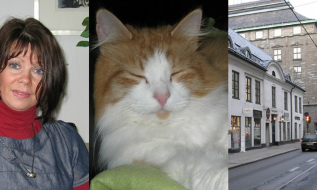 Alle bildene over er tatt med automatiske innstillinger i kameraet. For å se store utgaver av utsnittene, velg her: Portrett, katt, gate. Nederst i venstre hjørne av hvert utsnitt finner du informasjon om eksponeringen.