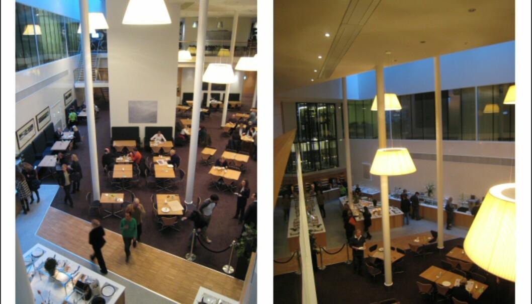 Buffet og spisesal, sett fra mezzaninen. <I>Foto: Elisabeth Dalseg</i>