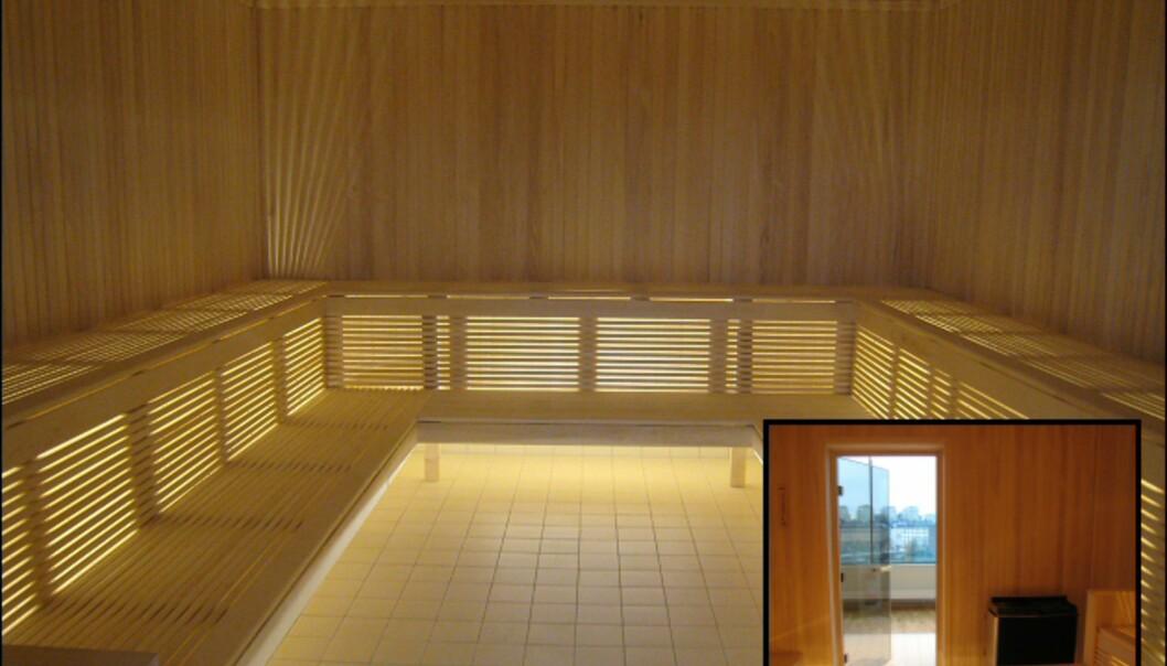 Stor badstu er også åpen for alle. Innfelt nederst til høyre er utsikten, den store badstuen har nemlig glassdør, slik at en kan se utover Stockholm. <I>Foto: Elisabeth Dalseg</i>