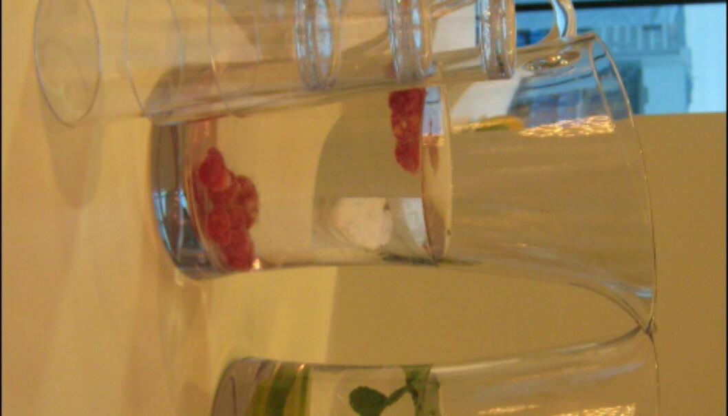 Frisk frukt, friskt vann med smak og aviser er tilgjengelig i spaens loungeområde. <I>Foto: Elisabeth Dalseg</i>