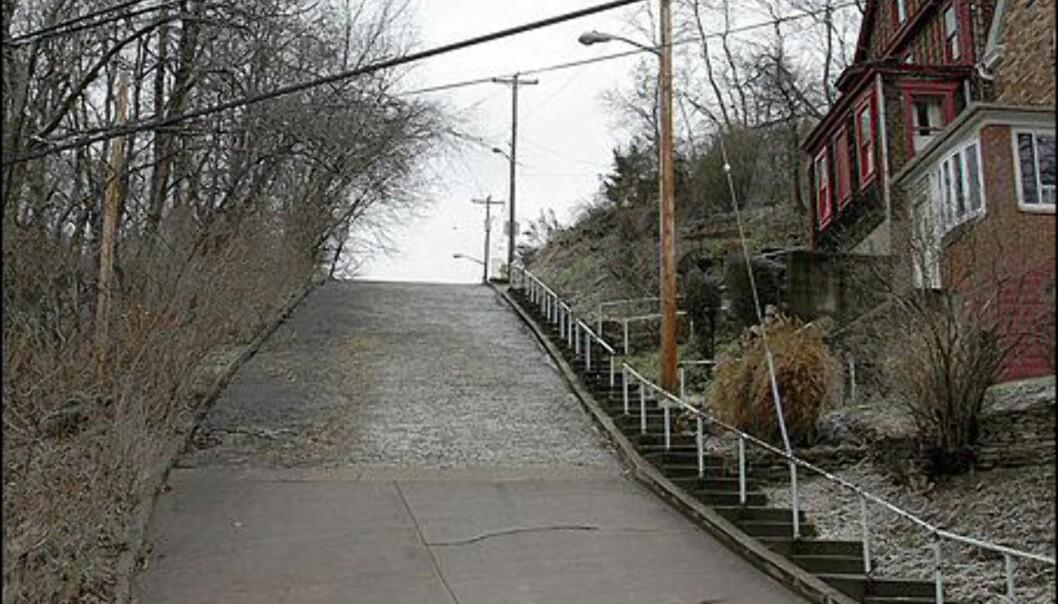 Canton Avenue, Pittsburgh, USA Foto: Wikipedia
