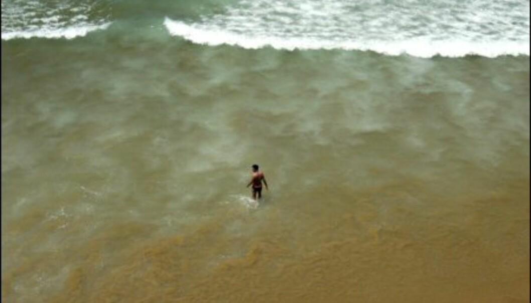 Drømmeforhold i Sagres!<br />  Foto: Vibeke Montero
