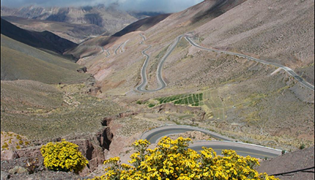 """Dette bildet er tatt på over 4500 meter over havet. En av mange """"trollstiger"""" på denne kjøreturen."""