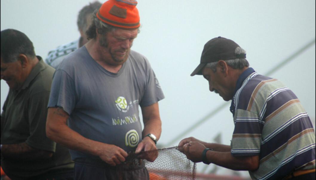 Fiskere i morgentåken.