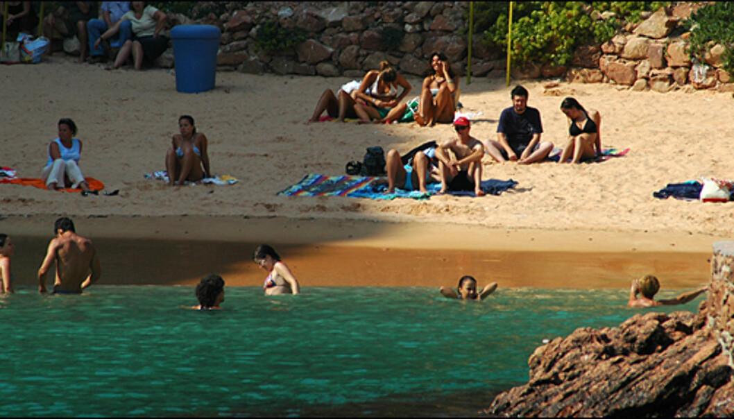 Stranden er også fin på Berlengas.