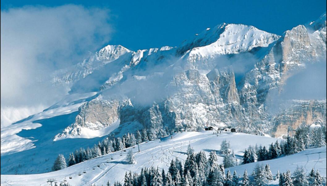 Bilder fra de beste skistedene