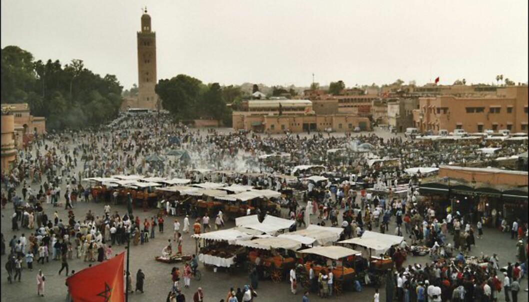 Djema el Fna er Marrakesh er mati, mennesker og magi. Foto: Vibeke Montero