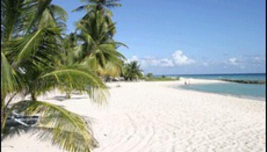 Hoteller spiser opp Karibias strender