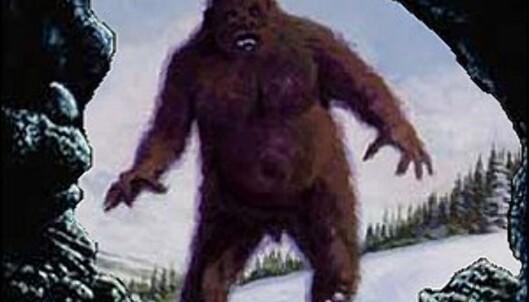 Er det slik den ser ut, den avskyelige snømannen?<br /> <i>Foto: Occultopedia</i> Foto: Occultopedia