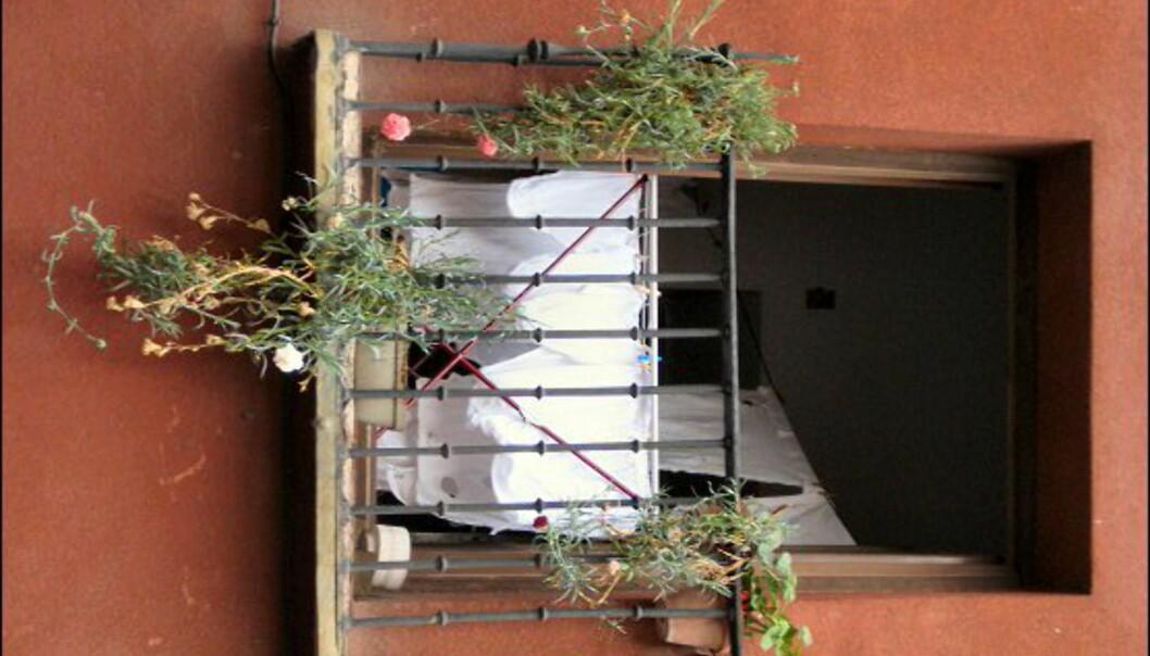 Underbukser til tørk i en leilighet i La Latina.