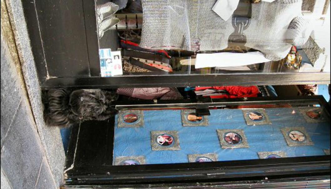 Denne vofsen passer på butikken til matmor i Chueca.