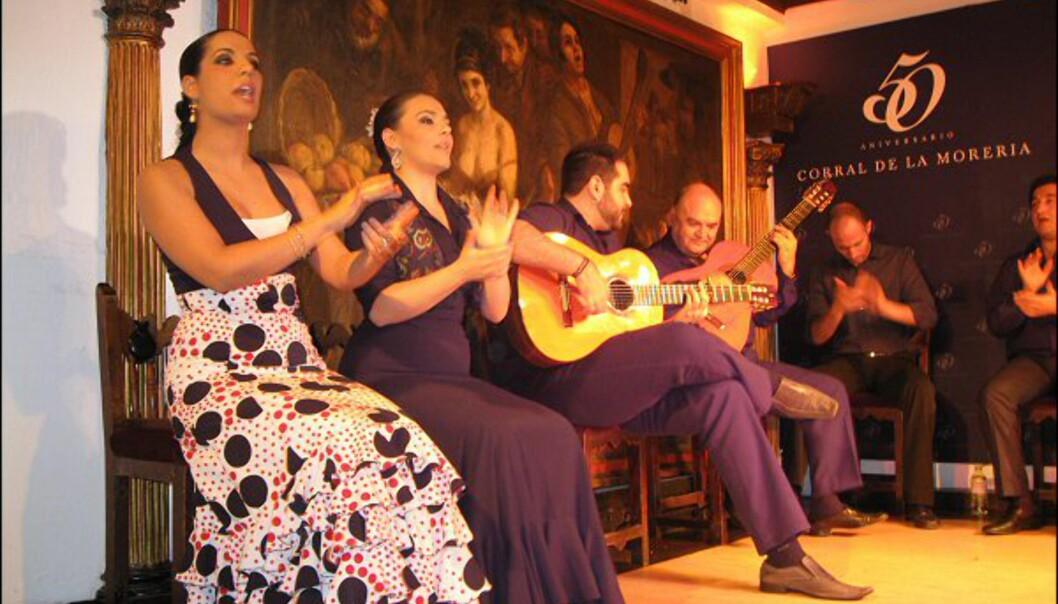 Du kan se flamencoshow flere steder i Madrid. Her fra Corral de la Moreria.